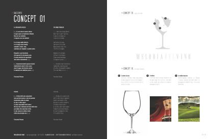 20121028_ G118_PresentazioneConceptLogoDesign_MelodiaDelVino_Page_02